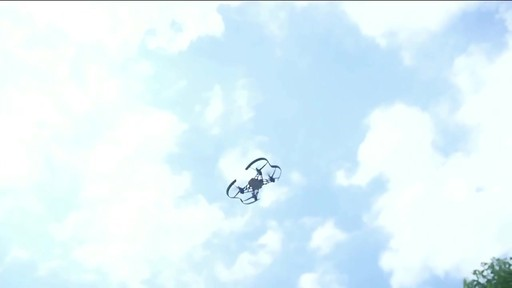 Parrot Airborne Cargo Minidrone - Shop eBags.com - image 3 from the video
