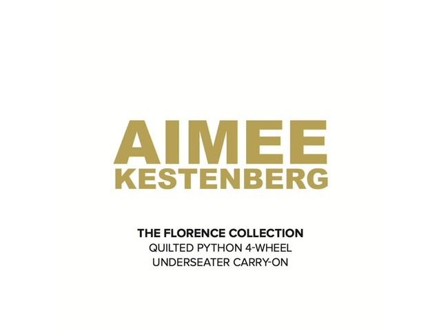 Aimee Kestenberg Florence Collection 4-Wheel Underseat Carry-On - image 1 from the video