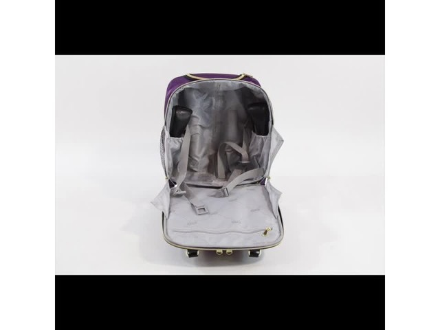 Aimee Kestenberg Florence Collection 4-Wheel Underseat Carry-On - image 10 from the video