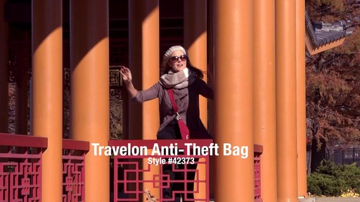 Travelon Anti-Theft Classic Crossbody Bag - eBags.com - image 1 from the video