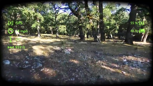 Parrot BeBop 2 Drone with FPV Bundle - image 3 from the video