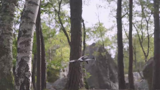 Parrot BeBop 2 Drone with FPV Bundle - image 6 from the video