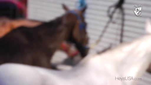 Heys USA Miami Polo - image 1 from the video