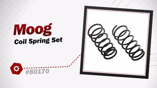Coil Spring Set - image 3 from the video