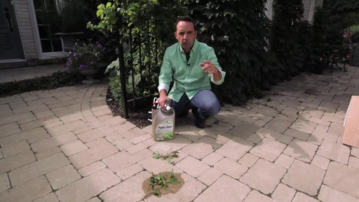 Controlling Weeds on Driveways with Frankie Flowers - image 2 from the video