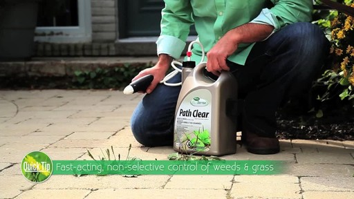 Controlling Weeds on Driveways with Frankie Flowers - image 3 from the video