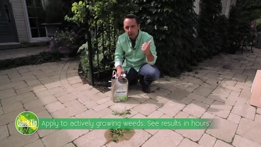 Controlling Weeds on Driveways with Frankie Flowers - image 4 from the video