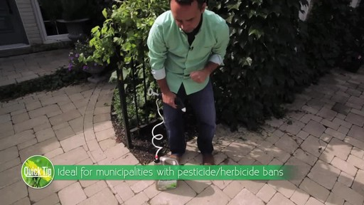 Controlling Weeds on Driveways with Frankie Flowers - image 7 from the video
