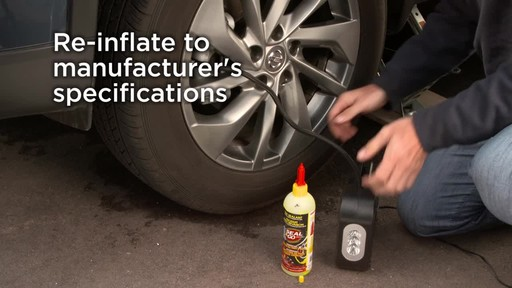 Victor Seal and Go Spray Inflator - image 6 from the video