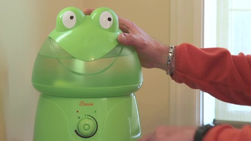 Crane Ultrasonic Frog Humidifier- Franco's Testimonial - image 1 from the video
