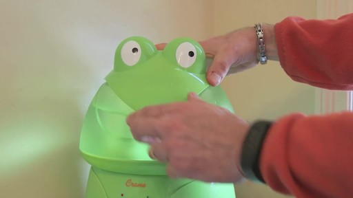 Crane Ultrasonic Frog Humidifier- Franco's Testimonial - image 7 from the video