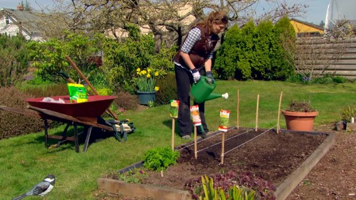 Starting a Vegetable Garden - Gardening Tips - image 10 from the video