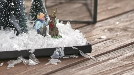 Create a wintery terrarium - image 6 from the video
