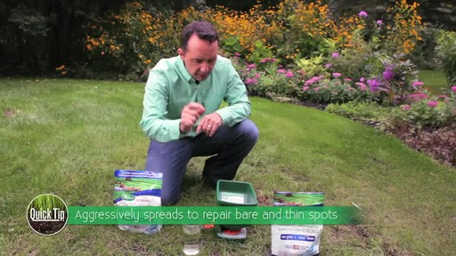 Seeding Your Lawn - image 4 from the video