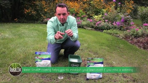 Seeding Your Lawn - image 6 from the video