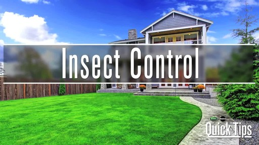 Insect Control with Frankie Flowers - image 1 from the video