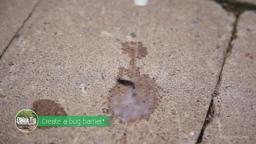 Insect Control with Frankie Flowers - image 7 from the video