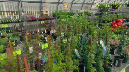 Canadian Tire Garden Centre - image 5 from the video