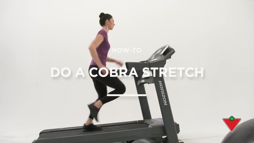 How to do a cobra stretch - image 1 from the video