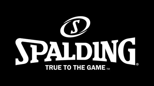 Spalding Multi-Colour Basketball - image 1 from the video