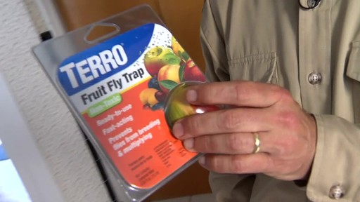 Terro Fruit Fly Trap - image 2 from the video