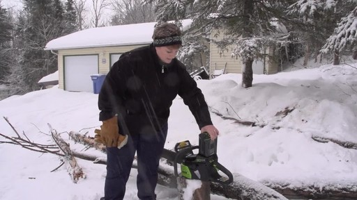 Greenworks 80V Cordless Chainsaw - Arlene's Testimonial - image 2 from the video
