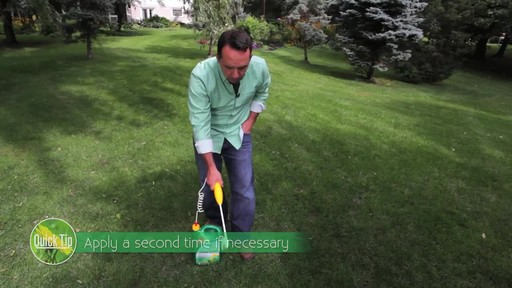 Controlling Lawn Weeds with Frankie Flowers - image 7 from the video