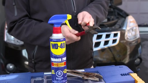 WD-40 Non-Aerosol Trigger Pro - image 5 from the video