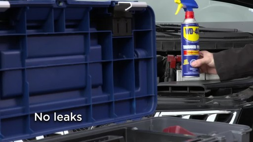 WD-40 Non-Aerosol Trigger Pro - image 6 from the video