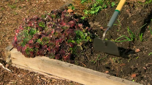 Garden Tool Basics - image 4 from the video