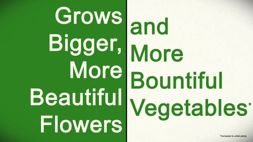 Feeding Your Plants with Frankie Flowers - image 9 from the video