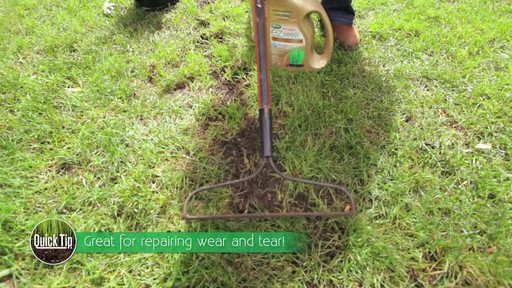 Repairing Lawn Patches with Frankie Flowers - image 3 from the video