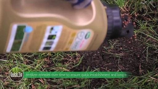 Repairing Lawn Patches with Frankie Flowers - image 4 from the video