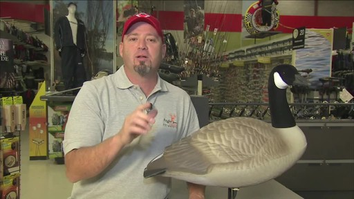 Full Body Goose Decoy - image 9 from the video