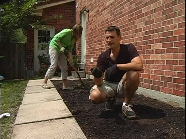 How to Maintain Your Vegetable Garden - image 5 from the video