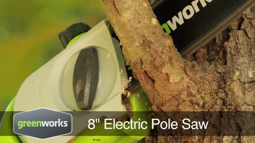 Greenworks 6.5A Electric Polesaw - image 1 from the video