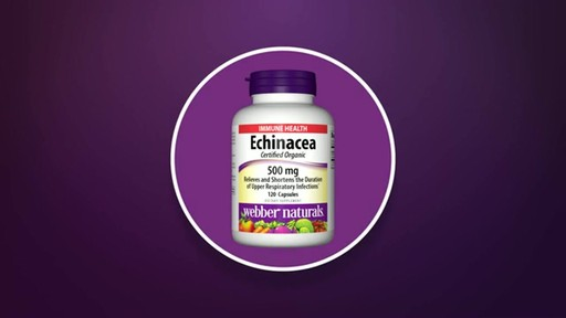 Webber Naturals Echinacea Extra Strength product | drugstore.com - image 3 from the video