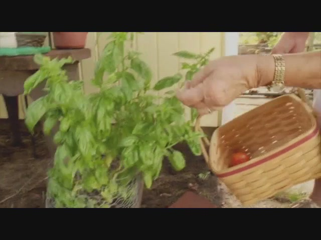 Mrs. Meyer's Clean Day - image 5 from the video
