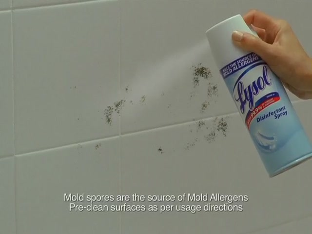 Lysol 4 in 1 Disinfecting Wipes - image 8 from the video