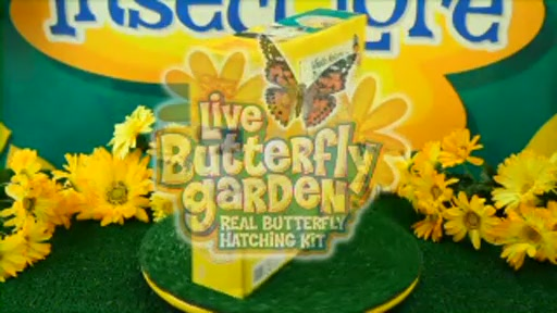 Insect Lore Butterfly Garden » Toys & Games » drugstore.com Video