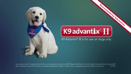 K9 Advantix II Dog Flea & Tick Drops - image 10 from the video