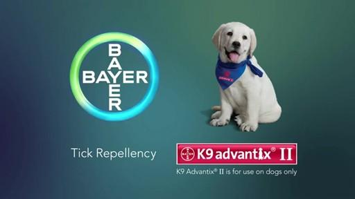 K9 Advantix II Dog Flea & Tick Drops - image 1 from the video