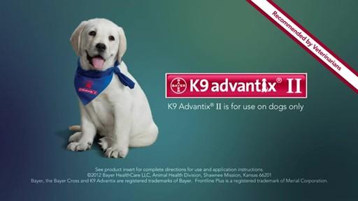 K9 Advantix II Dog Flea & Tick Drops - image 10 from the video