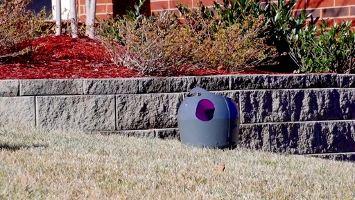 PetSafe Automatic Ball Launcher Dog Toy - image 2 from the video