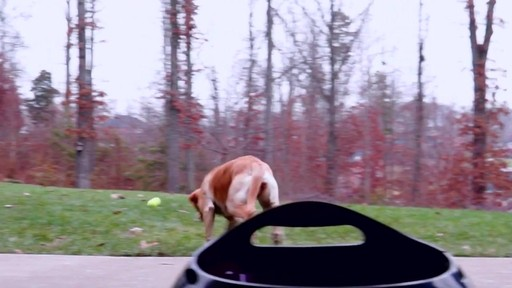 PetSafe Automatic Ball Launcher Dog Toy - image 3 from the video