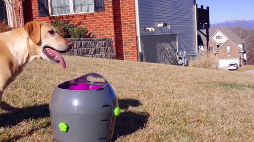 PetSafe Automatic Ball Launcher Dog Toy - image 5 from the video
