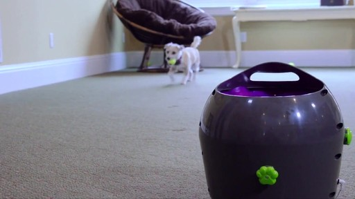 PetSafe Automatic Ball Launcher Dog Toy - image 9 from the video