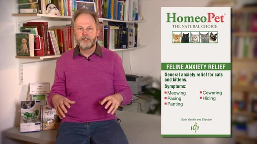 HomeoPet Feline Anxiety Relief - image 2 from the video