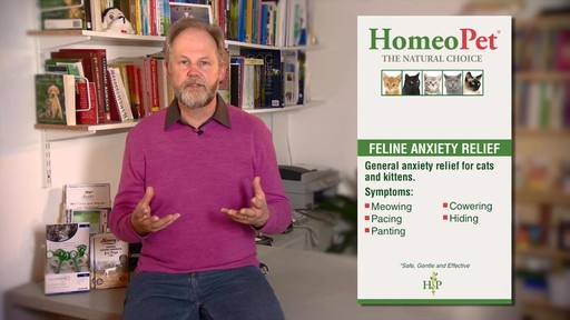 HomeoPet Feline Anxiety Relief - image 3 from the video