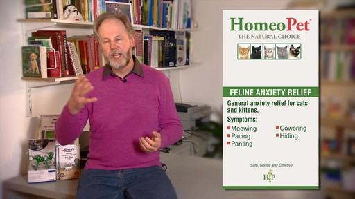 HomeoPet Feline Anxiety Relief - image 4 from the video